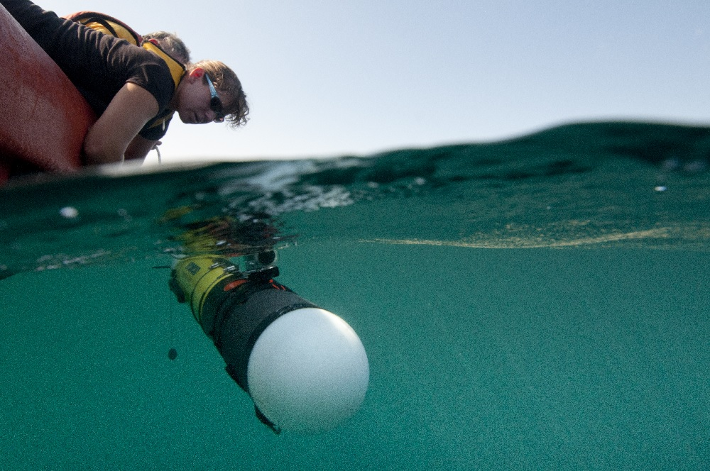 Did you know Hydroid was a WHOI startup? Amy Kukulya releases a REMUS 100 autonomous underwater vehicle (AUV) into the water over the shelfbreak north of Cape Hatteras. (Photo by Chris Linder, Woods Hole Oceanographic Institution)